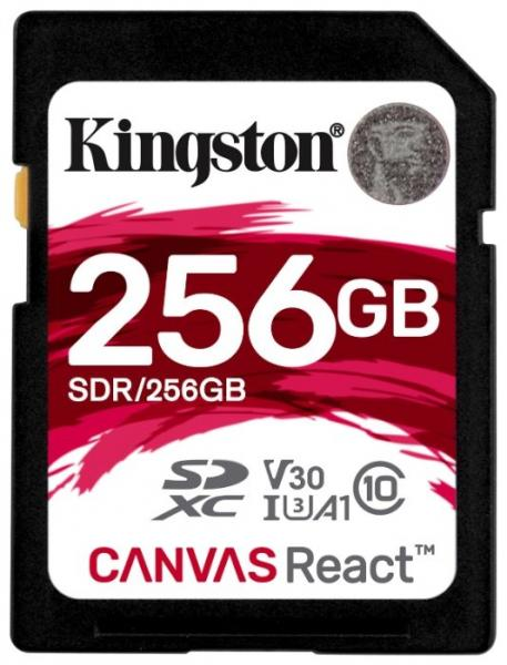Kingston SDR/256GB